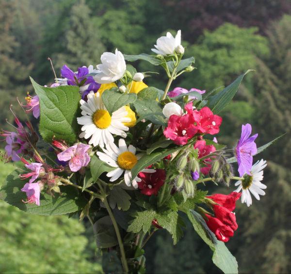 Fleurschamps